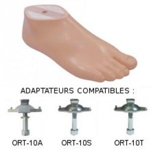 Sach foot, separate toe